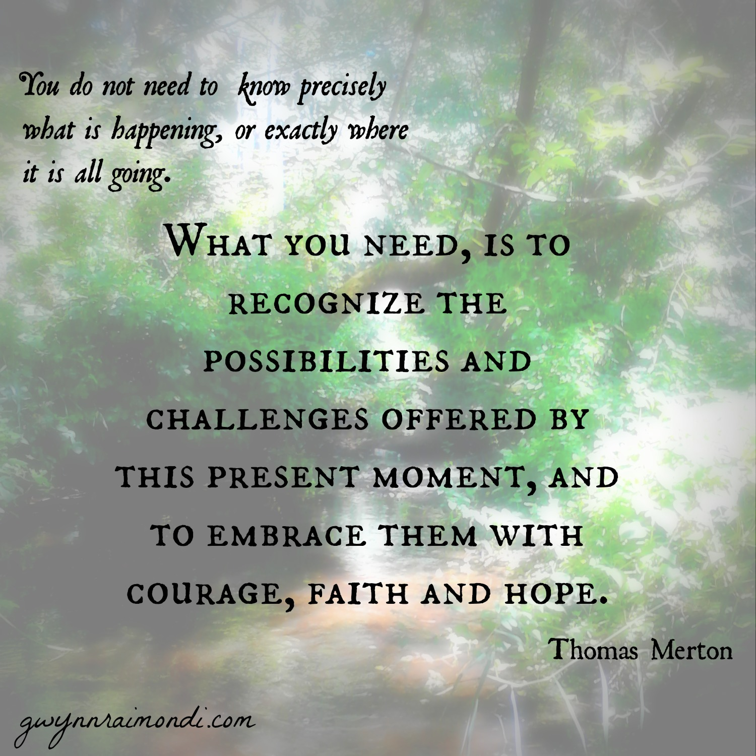 What you need Thomas Merton quote