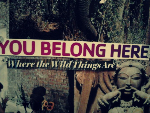 Being & Becoming: You belong here, where the wild things are