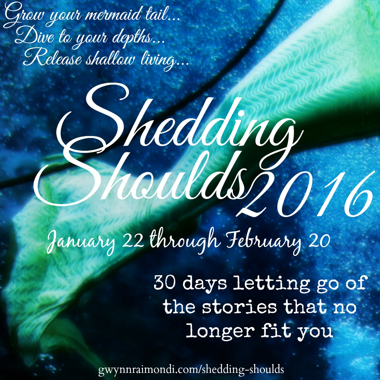 shedding shoulds 2016